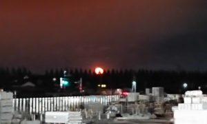 『月の出』の画像